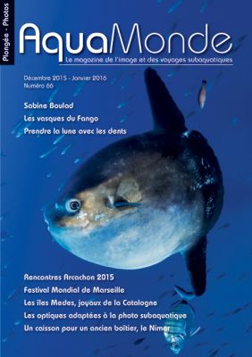 plongée, magazine photo sous marine